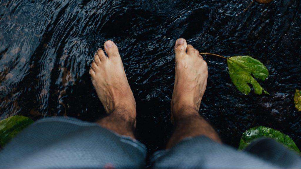 ¿Cómo se llaman los dedos de los pies?